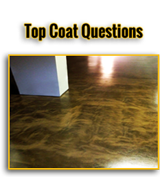 Top Coat Questions Button